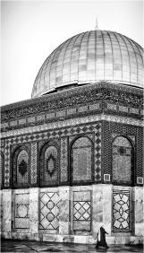 mosquedef